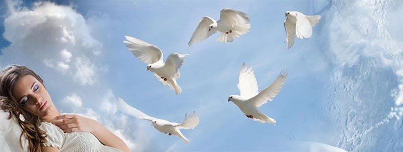 К чему снятся белые птицы?