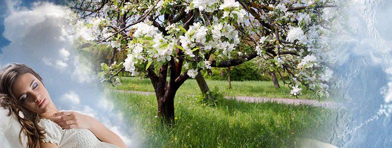К чему снится весна?