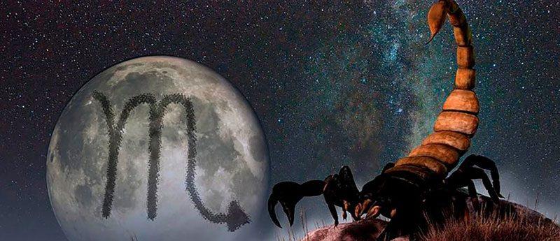 Скорпион мужчина — характеристика знака зодиака.