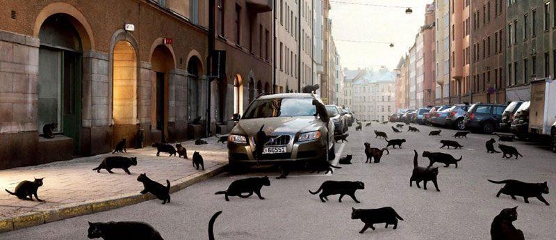 Приметы автомобилистов, дорожные суеверия